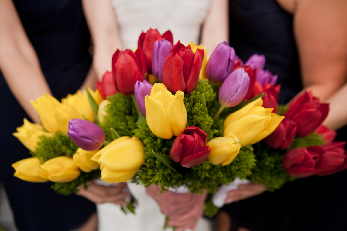 Romatic Red, Yellow and Purple Tulip Bridesmaid Bouquets | The Majestic Vision Wedding Planning | Ann Norton Sculpture Garden in Palm Beach, FL | www.themajesticvision.com | Dove Wedding Photography