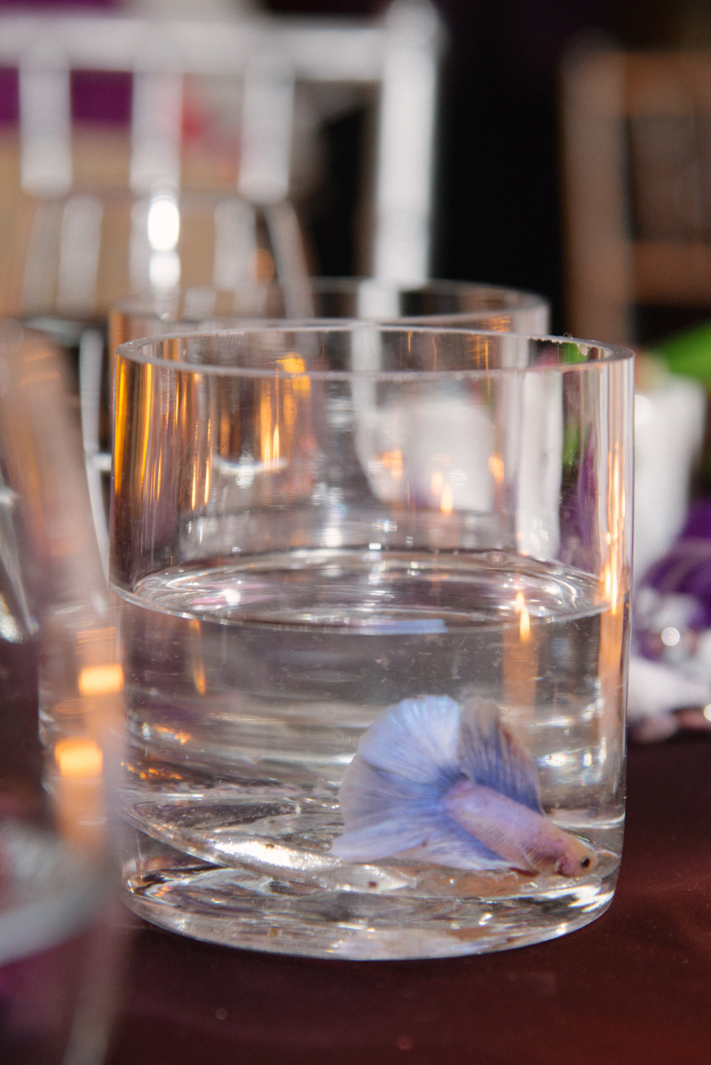 Unique Purple Betta Fish Centerpiece | The Majestic Vision Wedding Planning | The Addison Boca in Palm Beach, FL | www.themajesticvision.com | Starfish Studios