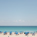 Beautiful Waterfront Wedding at Marriott Singer Island in Palm Beach, FL thumbnail