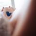 Bride's Something Blue Sewed Into Stunning Pnina Tornai Bridal Gown at Sailfish Marina in Palm Beach, FL thumbnail
