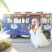 Elegant Bride Wearing Enzoani Bridal Gown at Palm Beach Shore in Palm Beach, FL thumbnail