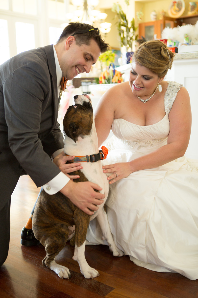 Dog as Bridal Party Member in Orange Dog Flower Collar | The Majestic Vision Wedding Planning | Palm Beach Zoo in Palm Beach, FL | www.themajesticvision.com | Robert Madrid Photography