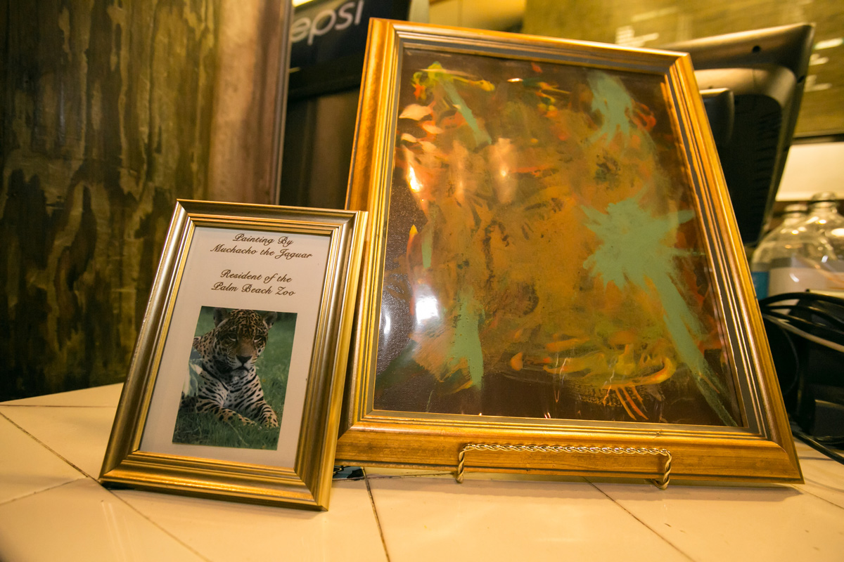 Unique Jaguar Painting   The Majestic Vision Wedding Planning   Palm Beach Zoo in Palm Beach, FL   www.themajesticvision.com   Robert Madrid Photography
