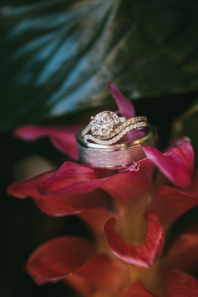 Beautiful Wedding Rings   The Majestic Vision Wedding Planning   Palm Beach Zoo in Palm Beach, FL   www.themajesticvision.com   Robert Madrid Photography