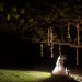 Elegant Grand Exit with Twinkle Lights at Rustic Manor in Milwaukee, WI thumbnail