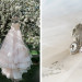 Stunning Blush Tara Keely Wedding Gown at Rustic Manor in Milwaukee, WI thumbnail